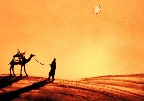 Reves dans le sable (11)