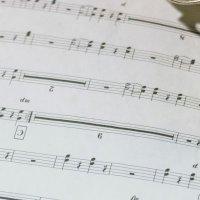 L'Ecole de musique accueille SOA